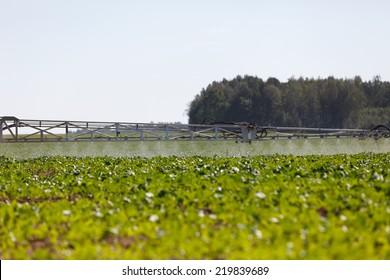 Tractor pesticide fungicide insecticide sprayer