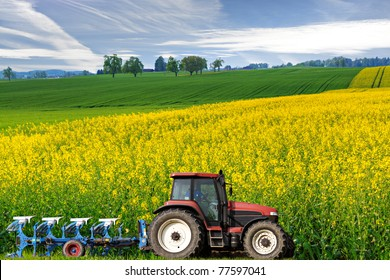 tractor with plough drives along beautiful sweeping blossoming bright yellow canola fields, concept for agriculture business