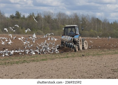 Tractor plowing, Russia, early spring