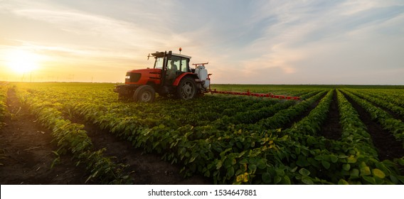 Traktor-Spritzen von Pestiziden auf Sojabohnenfeld mit Sprühwasser im Frühjahr
