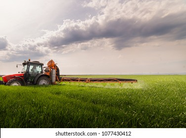 Tractor spraying pesticides on wheat field with sprayer at spring