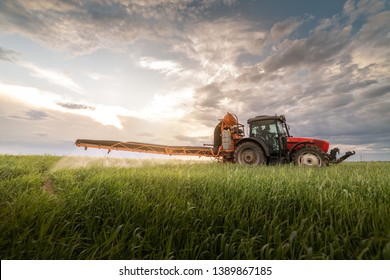 Tractor spraying pesticides at  wheat fields