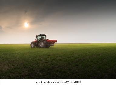 Tractor spreading artificial fertilizers  in field
