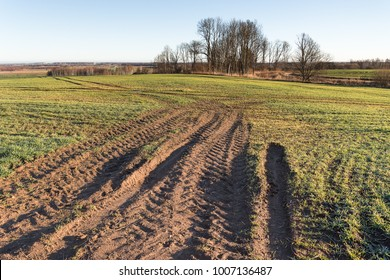 Tractor tire track in wet agricultural field.