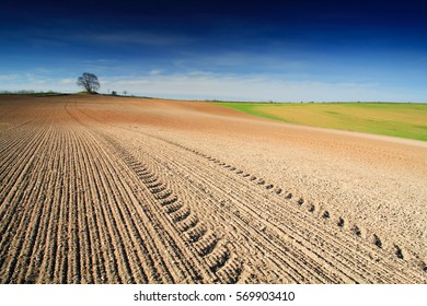 Tractor Tracks in Plowed Field under Blue Sky with Clouds, Spring Landscape