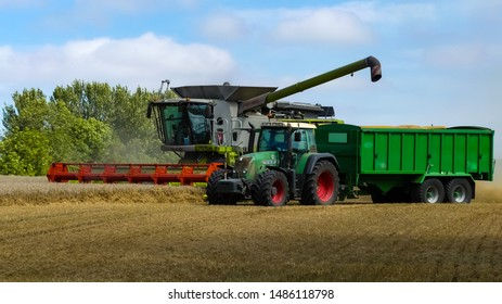 Tractor & trailer manoeuvres into position alongside a working combine harvester ready to discharge grain, in a cornfield. Dust cloud from operation. Landscape image with space for copy, England.