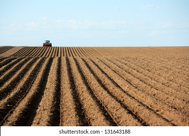 A tractor working planting potatoes in the fertile farm fields of Idaho.  Focus in on the freshly planted rows.