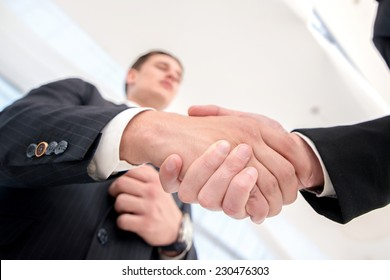 Trade confirmation. Two successful and confident businessman talking in office shaking hands with each other