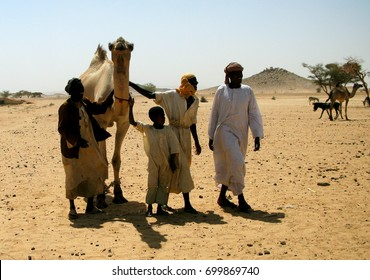 Trading of Camels at the Omdurman market - 01-03-2011 Khartum, Sudan