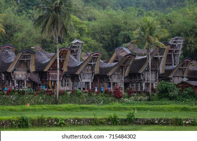 Traditioanl saddleback roof tongkonan houses of Tana Toraja in South Sulawesi, Indonesia