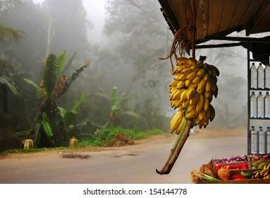 Tradition street trading over road on palms background in fog, Ella, Sri Lanka