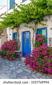 Traditional alley with a narrow street, whitewashed houses and a blooming bougainvillea  in pyrgos Tinos island, Greece.
