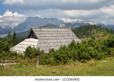 Traditional alpine wooden house on a mountain surrounded by green trees and bushes with a view of other mountains in Julian Alps on Velika Planina in Slovenia