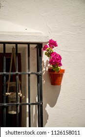 Traditional Andalusian facade with geranium in a flower pot