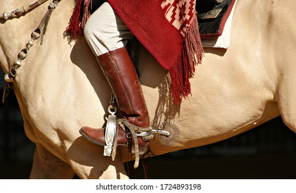 Traditional argentine spur contrasted with the fur of a buckskin criollo horse under sunlight