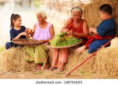 Traditional Asian Thai rural daily life, grandchildren in cultural costumes help their seniors preparing local food ingredients for the meal. Diversity in age, Agricultural economy, outdoor setting.