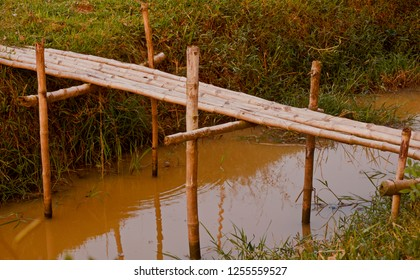 A traditional bamboo made small bridge unique photo