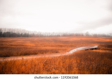 traditional bridge with orange grass fields on cloudy sky background in winter - Philadelphia, Pennsylvania USA