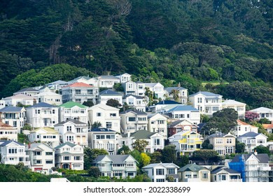 Traditional century and earlier hillside homes make a residential pattern on city hillside in Wellington New Zealand.