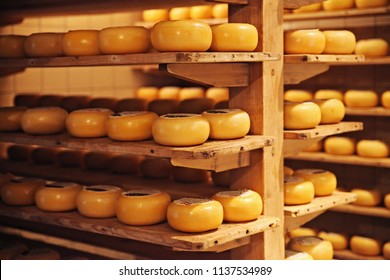 Traditional cheese factory at Holland