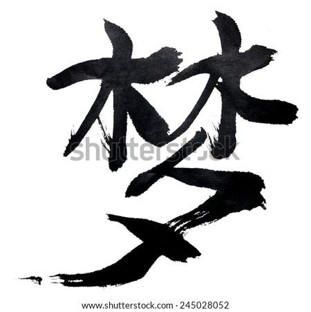 Traditional Chinese Calligraphy Dream Isolated On Stock Photo Edit