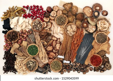 Traditional Chinese herbs used in herbal medicine with acupuncture needles on a bamboo mat and cream background.