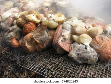 Traditional Clambake. Mussels, clams, lobster, onions, potatoes and sausage steamed over seaweed.