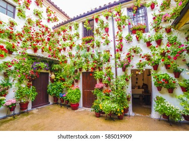 Traditional courts with flower in Cordoba, Spain