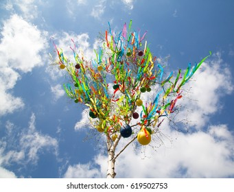 Traditional Czech Easter decoration - decorated birch tree (Betula pendula) with colorful ribbons and painted eggs - rural symbol of easter holiday.