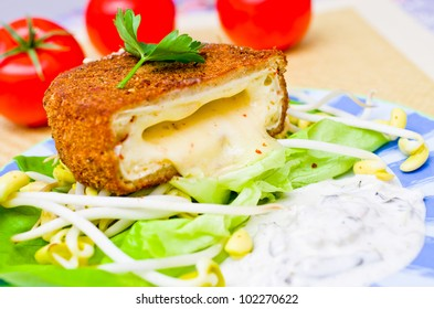 Traditional czech fried cheese with tatar sauce - Shutterstock ID 102270622