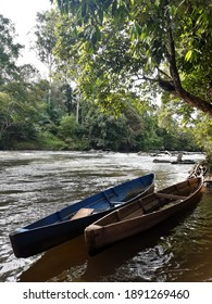 Traditional Dayak boats in the Borneo Forest River