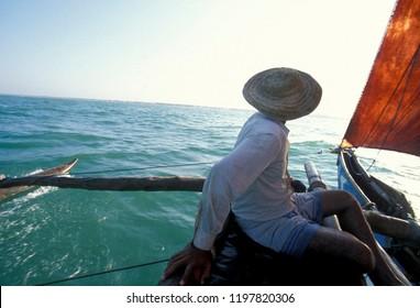 traditional Dhoni Fishingboats at the coast of  Nagombo at the westcoast of Sri Lanka in Asien.      Sri Lanka, Nuwara Eliya, December, 2003