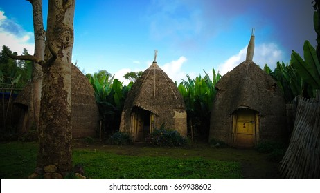 Traditional Dorze tribe village in Chencha, Ethiopia