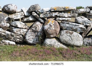 Traditional dry stonewall in farmlands at the swedish island Oland
