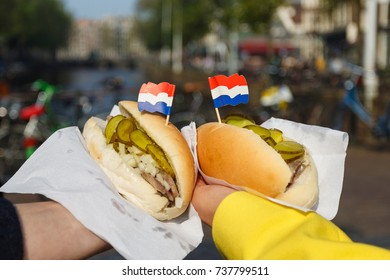 Traditional dutch sandwich with herring in a hands outdoors