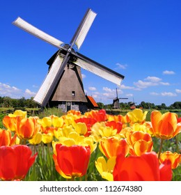 Traditional Dutch windmills with vibrant tulips in the foreground, The Netherlands