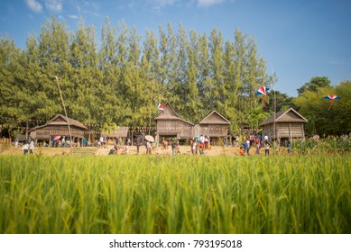 Traditional  E Sarn Thai House with the Rice Field in the front
