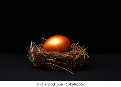 traditional egg painted in golden color inside nest isolated on black background. Happy Easter concept