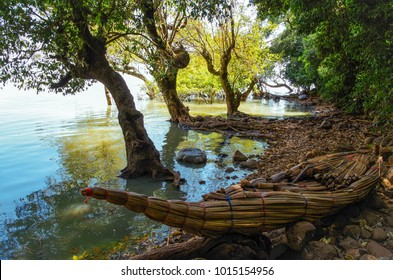 The traditional Ethiopian papyrus boat on the coast of the lake Tana, the largest lake in Ethiopia. Amhara Region, the north-western Ethiopian Highlands