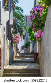 Traditional European Mediterranean architectural style in the streets and houses, yard, porches, stairs, shutters in the afternoon sunbeam, surrounded by vine, hydrangea and palm at summertime. Losinj