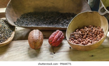 Traditional farm in the Dominican Republic where cocoa,chocolate and coffee are produced in the old fashion way.