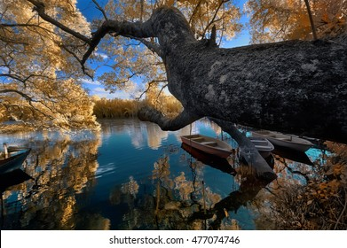 Traditional fishermen village view in  infrared color photography., soft focusing