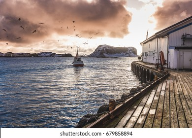 Traditional fishing harbor with seagulls on islands of Rost on Lofoten islands in Norway