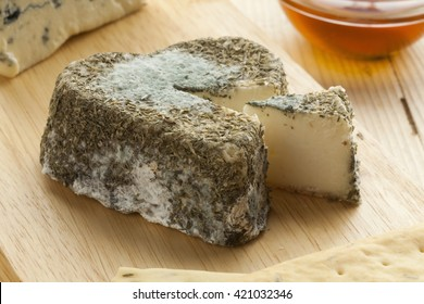 Traditional French goats cheese with edible mold