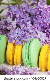 Traditional french macaroons with twigs of lilac