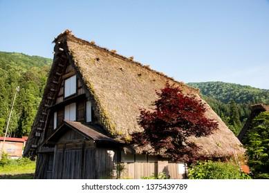 Traditional Gassho-zukuri houses at UNESCO World Heritage Traditional and Historical Japanese village Shirakawago in spring at Gifu Prefecture, Japan