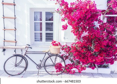 Traditional greek house facade with flowers in Santorini island, Greece