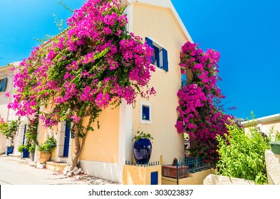 Traditional greek house with flowers in Assos, Kefalonia island, Greece. Blue door and blue window surrounded by magenta flowers.