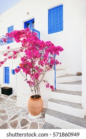 Traditional greek house with flowers in Greece
