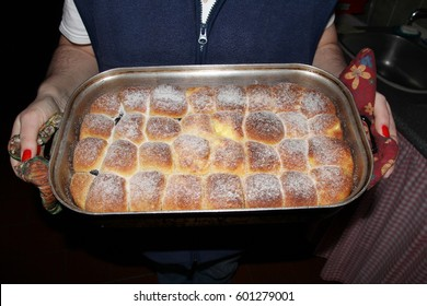 Traditional home made cake with curd cheese and plum jam filling in cake tin, hands of female cook, perfectly baked, gold colour, sprinkled with powder sugar, yummy snack